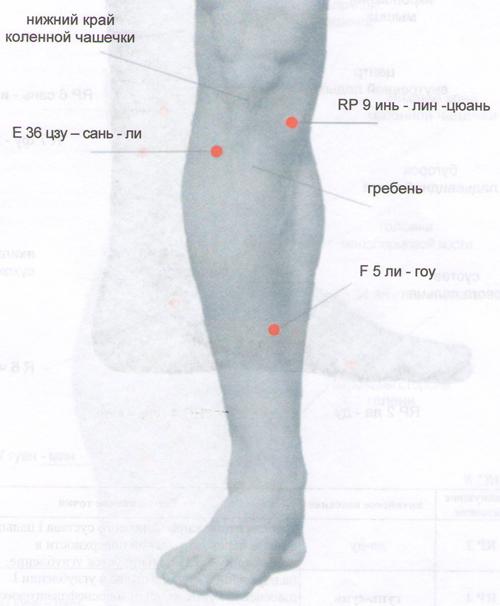 энергетические зоны на ноге