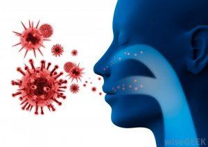 Иммунитет и паразитология. Городиский Б.В.